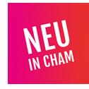 NeuinCham